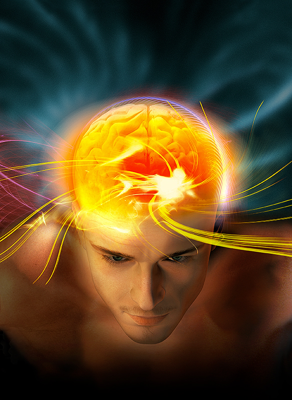 La Recherche | La Mémoire et le Cerveau